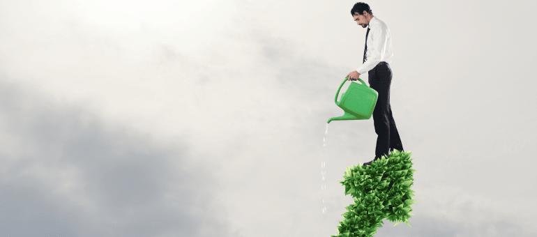 צמחית עסק, מכרזים והזדמנויות עיסקיות